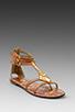 Image 1 of Sam Edelman Genna Sandal in Saddle