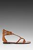 Image 2 of Sam Edelman Genna Sandal in Saddle