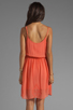 Image 4 of Sanctuary Sand Beneath Your Toes Dress in Tequila Sunrise