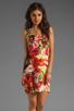 Image 1 of SAM&LAVI Daffodil Dress in Seville