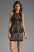 Image 1 of Style Stalker Panthers Lace Dress in Black