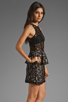 Image 3 of Style Stalker Panthers Lace Dress in Black