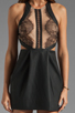Image 5 of Three Floor Night Cat Dress in Black/Nude