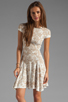 Image 1 of Torn by Ronny Kobo Patricia Dove Dress in White/Nude