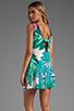 Image 1 of Twelfth Street By Cynthia Vincent Leeward Drop Waist Scoop Back Dress in Summer Leaf