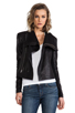 Image 1 of VEDA Max Classic Crispy Leather Jacket in Black