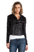 Image 2 of VEDA Max Classic Crispy Leather Jacket in Black