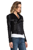 Image 3 of VEDA Max Classic Crispy Leather Jacket in Black