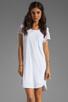 Image 1 of Velvet by Graham & Spencer Dasha Sheer Jersey T Shirt Dress in White