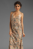 Image 1 of Winter Kate Swan Dress in Identity Latte/Ivory Lace