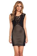Adison Dress in Black