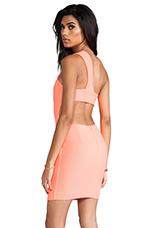 Felix Mini Dress in Pink Grapefruit