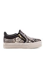 Jordy Sneaker in Roccia & Black
