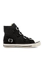 Virginy Sneaker in Black
