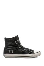 Virgin Sneaker in Black