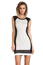 Eva-Marie Dress in Black & Beige