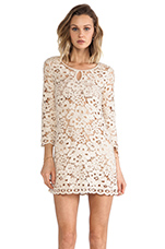 Lace Dress in Almond Blossom