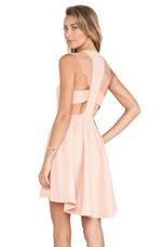 Lace Shoulder Dress in Blush