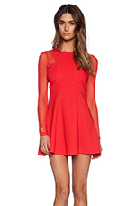 Long Sleeve Paneled Dress in Passion