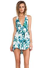 Foliage Dress in Multi