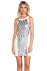 Fleck Dress in Multi/Ivory