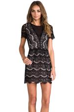 Saurus Eyelash Lace Dress in Black