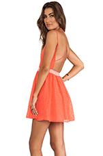 Hanni Dress in Bright Orange