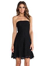 Amira Lace Dress in Black
