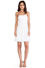 Amira Lace Dress in White