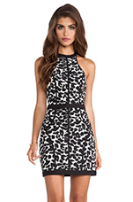 Winter Birds Dress in Leopard Print & Black