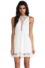 Lulu Dress in Ivory Lace
