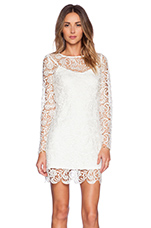 Dove Dress in White Lace
