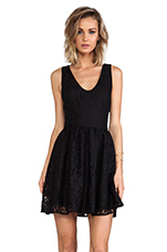 Phelia Lace Dress in Caviar