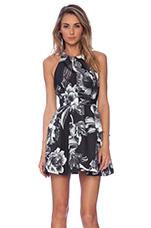 Beautiful Liar Dress in Monochrome Bloom