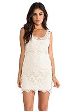 Cotton Crochet Dress in Ivory