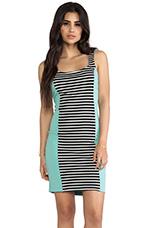 Colorblocked Stripe Bodycon Dress in Stripe & Mint