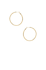 Eternity Hoop Earrings in Gold