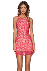 Lovers + Friends Radiant Dress in Pink Lace