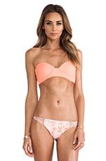 Swimwear Bordeaux Bikini Top in Coral
