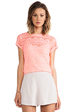 Allover Lace Shirt in Coral