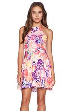 Mess Around Dress in Summer Rose Print