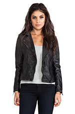 Chello Moto Biker Jacket in Dark Chocolate