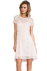 Lacy Not Racy Dress in Blush