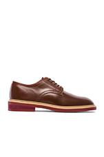 Barry Shoe in Dark Brown & Beige & Bric