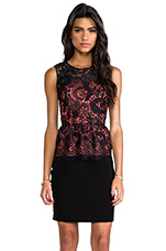 Lace Combo Celeste Dress in Black with Coral