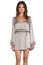 Rainey Mini Dress in Silverdollar Silky Satin