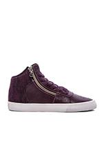 Cuttler Sneaker in Purple