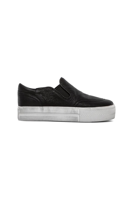Ash Jungle Sneaker in Black