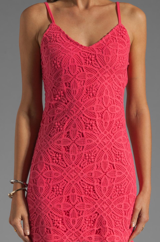 BB Dakota Maiden Crochet Lace Dress in Fiery Pink