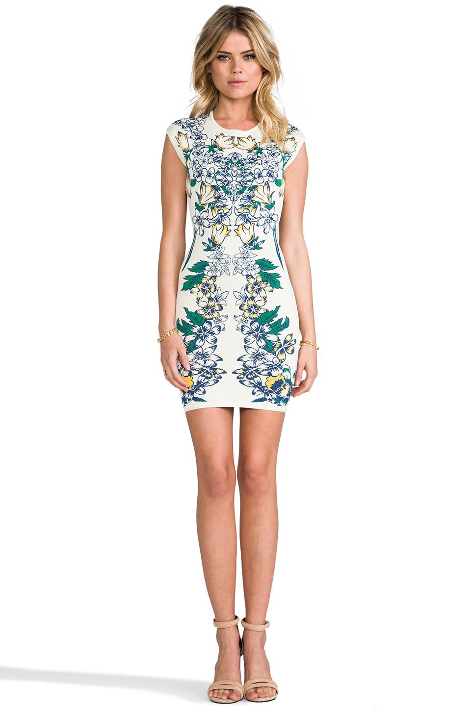 BCBGMAXAZRIA Ellena Dress in Tiger Lily